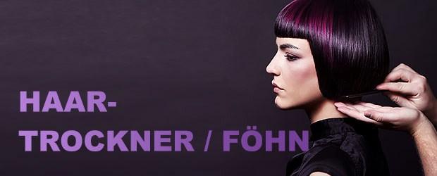 Haartrockner / Föhn